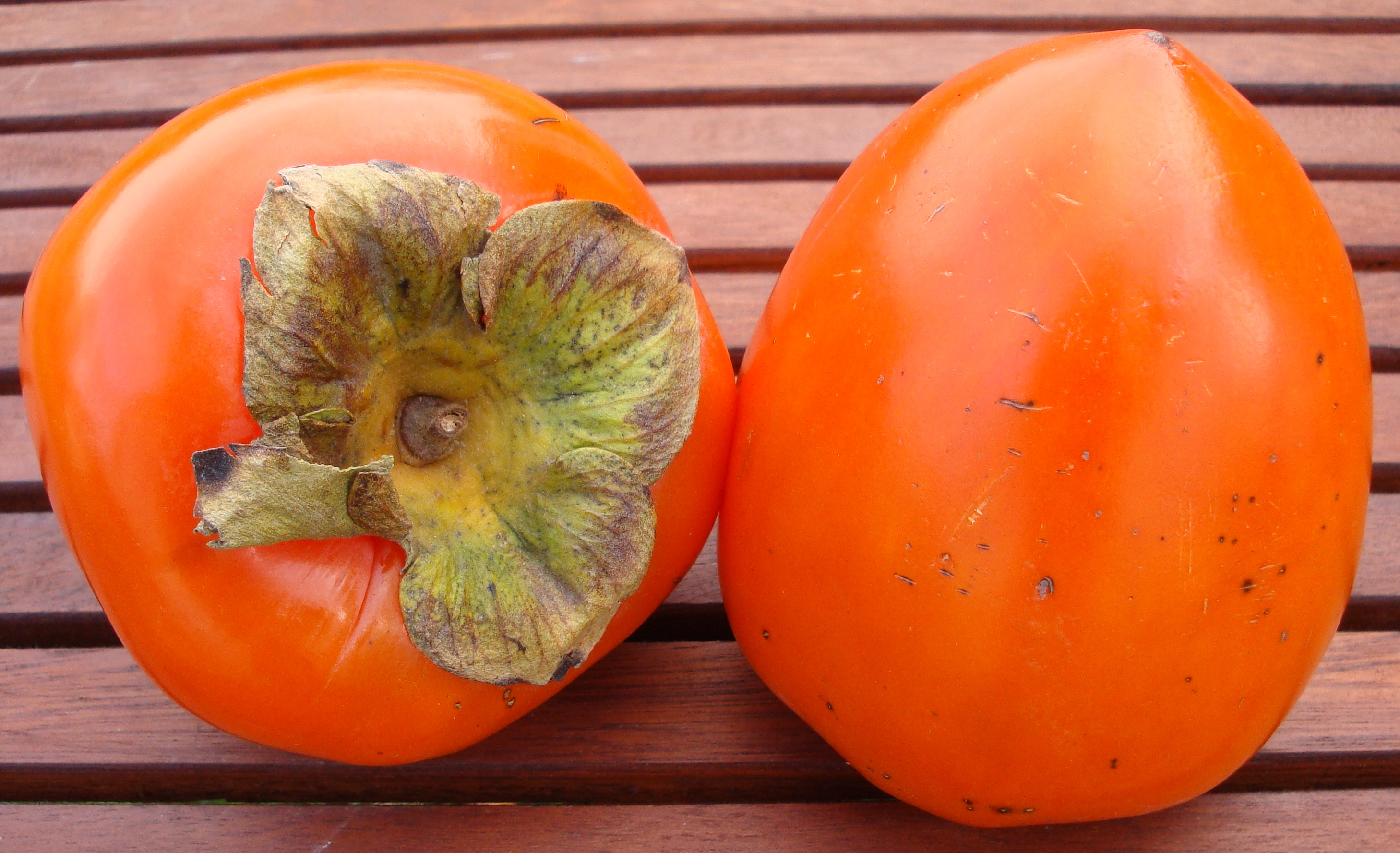 New Arrival!5pcs Japanese persimmon Plants persimmon Fruit ...