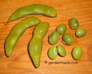 Black soy beans (5547)