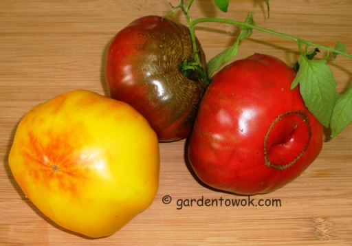 Heirloom tomatoes (5665)