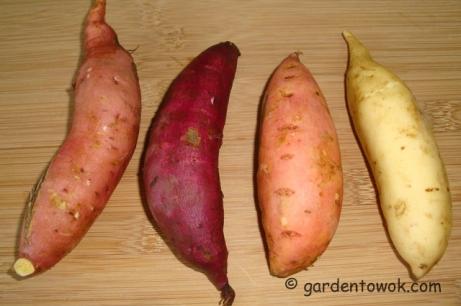 Sweet potatoes (5795)