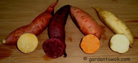 Sweet potatoes (5796)
