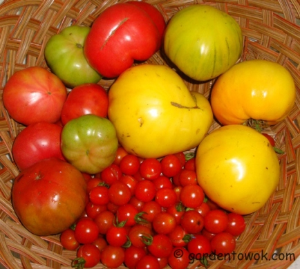 Heirloom tomatoes (5866)