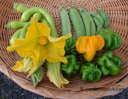 Vegetables (5914)
