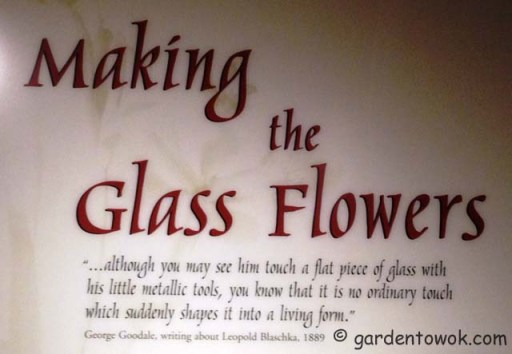 Making of the glass flowers
