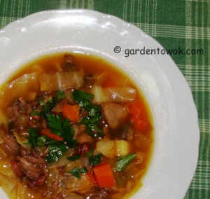 Beef & root veggies soup (5933)