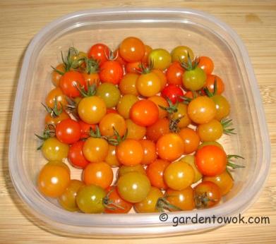 Chery tomatoes (5934)