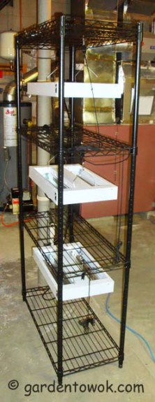Seed starting stand (06142)