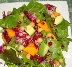 Mixed salad (06164)
