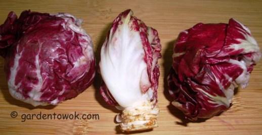 Chicory (radicchio)