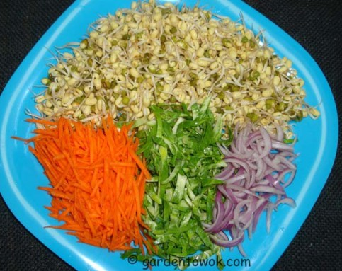 Mung beans sprouts (06239)
