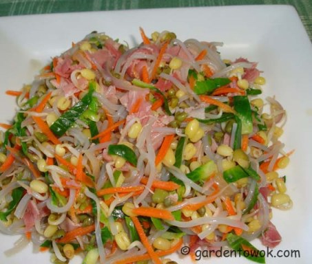 Sweet potato noodles stir-fry (06249)