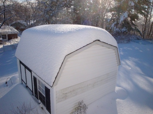 Snow covered shed (06279)