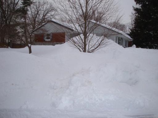 Snow bank (06298)