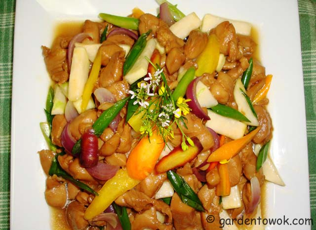 chicken stir-fry (06673)