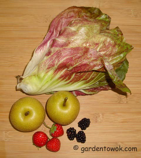 radicchio, Asian pear (06690)