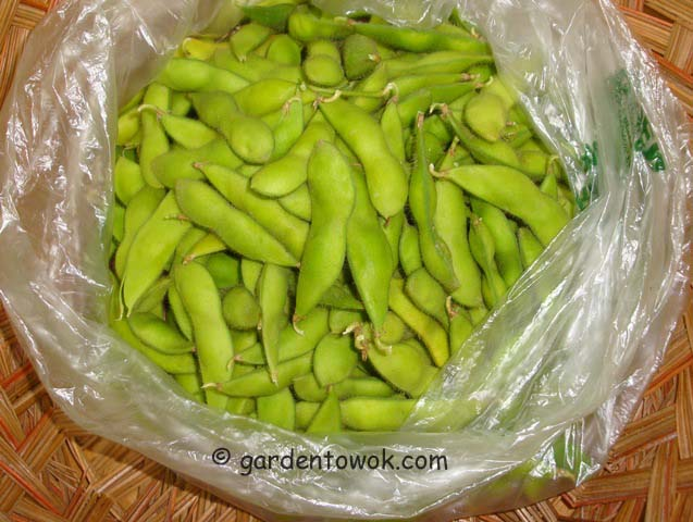 besweet 2001 soy beans (06693)