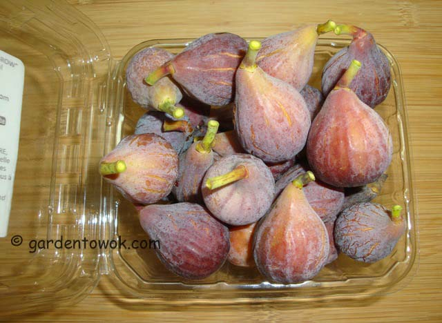 figs (06704)