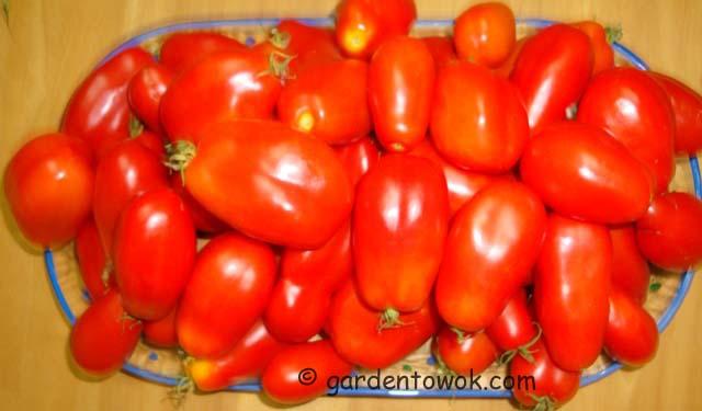 san marzano tomato (06802)