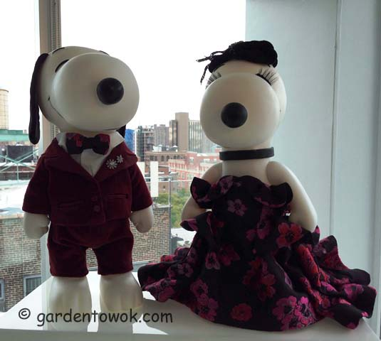 Snoopy & Belle in fashion (IMG_2210