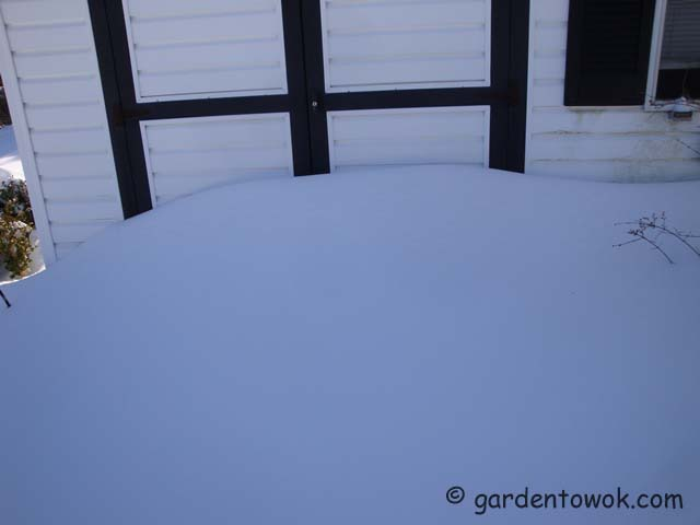snow by shed door (07153)