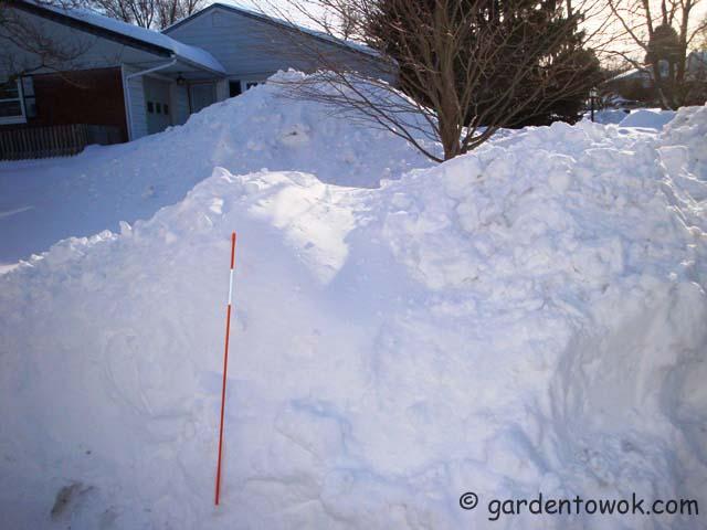 snow along driveway (07171)