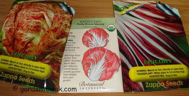 chicory/raddichio (07209)