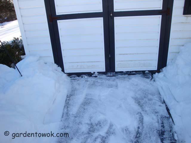 shed door (07237)