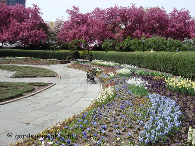 central park's conservancy garden (05681)