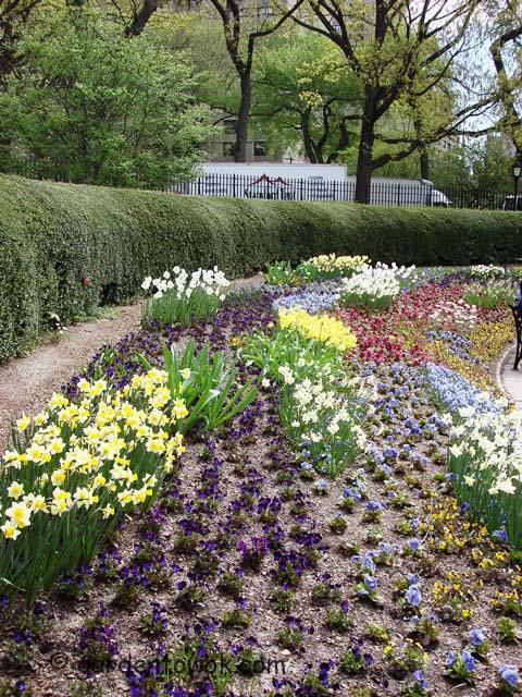 central park's conservancy garden (05683)
