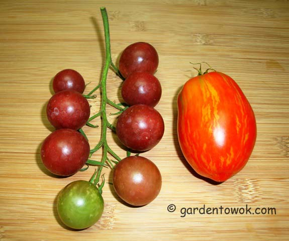 black cherry & speckled roma tomatoes (08060)