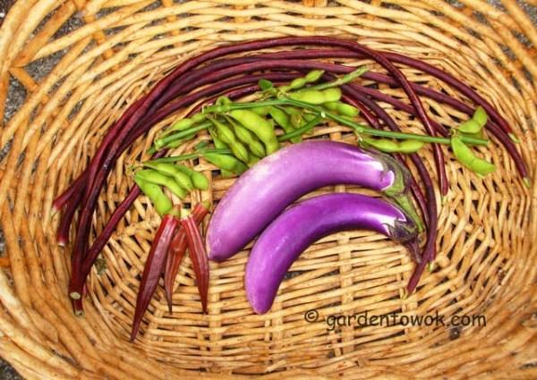 few 1st harvest (08094)