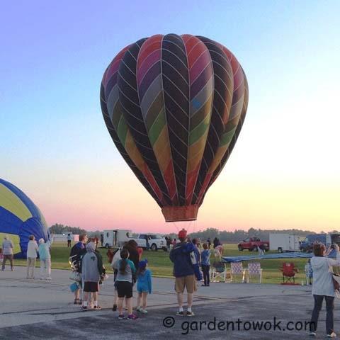 hot-air balloon (IMG_0835)