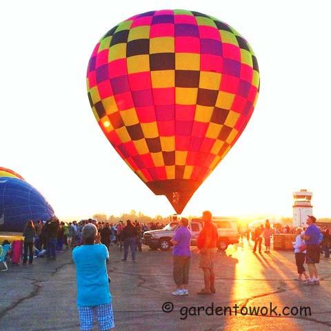 hot-air balloon (IMG_0836)