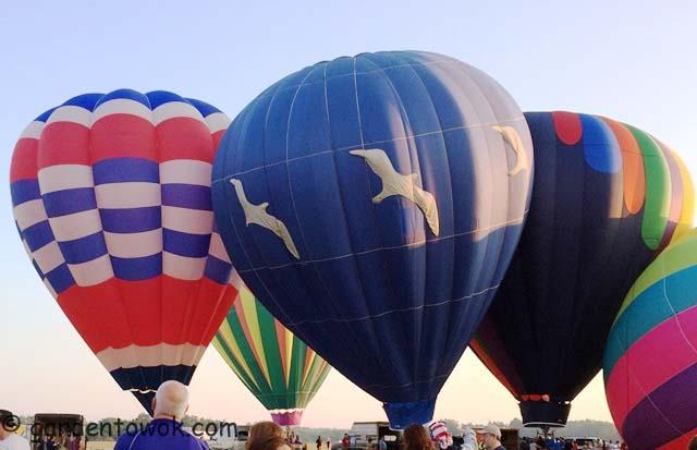 hot-air balloon (IMG_0838)