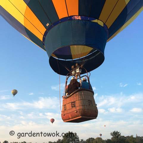Hot-air balloon (IMG_0851)