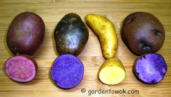 potatoes (08222)