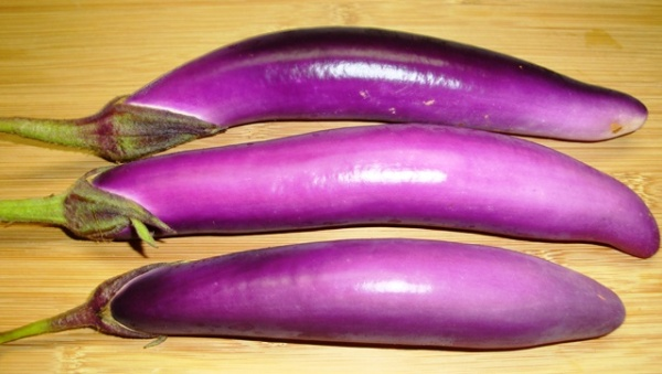 ping tung eggplants (08460)