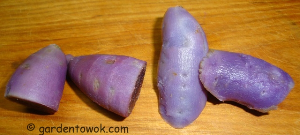 purple and Okinawan sweet potatoes (08517)
