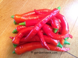 Jimmy Nardelli Peppers